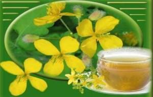 Чистотел - трава для лечения раковых опухолей